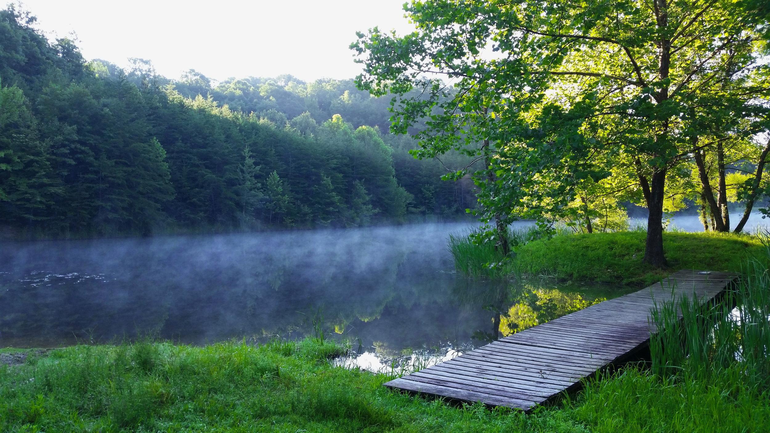 Morning Mist2.jpg