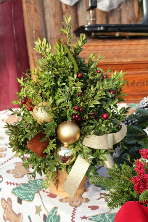 B- Boxwood tree with gold.jpg