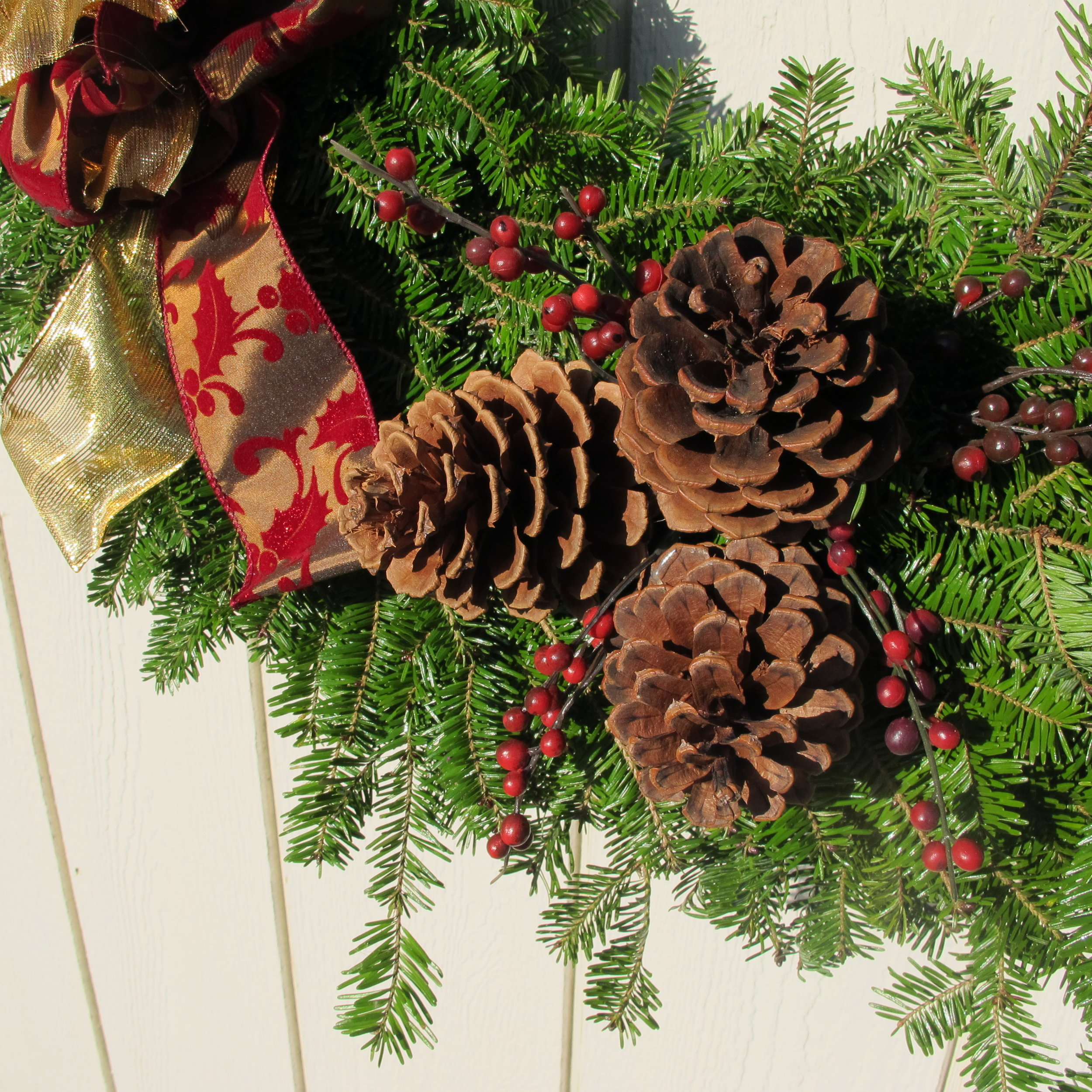 W- Close up of pine cones and berries.JPG
