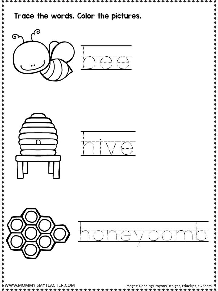 BEE PICTURE WORDS.jpg