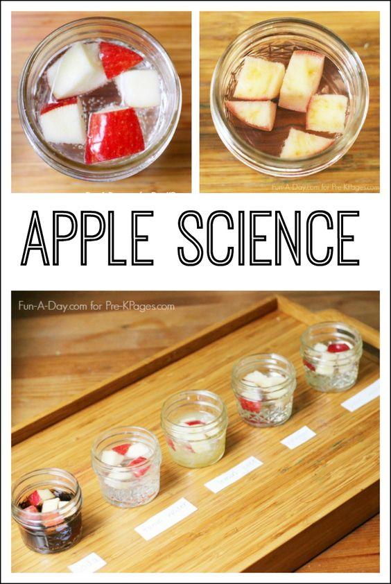 apple science.jpg