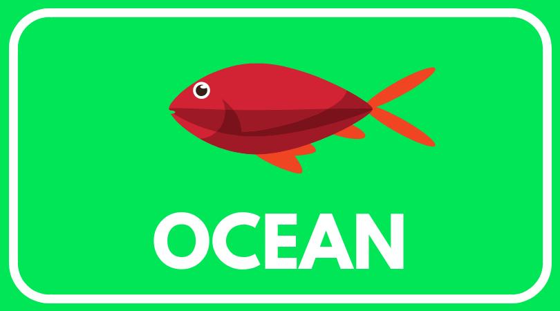 ocean worksheets(1).png