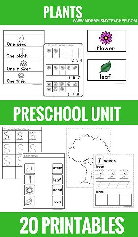 PLANTS PRESCHOOL THEME UNIT PRINTABLES.png