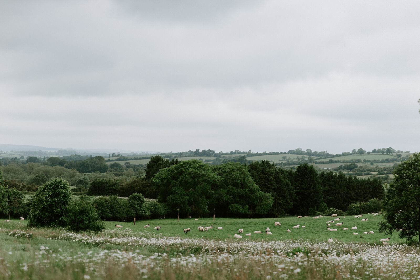 Intimate_Warwickshire_Countryside_Wedding_UK_3.JPG