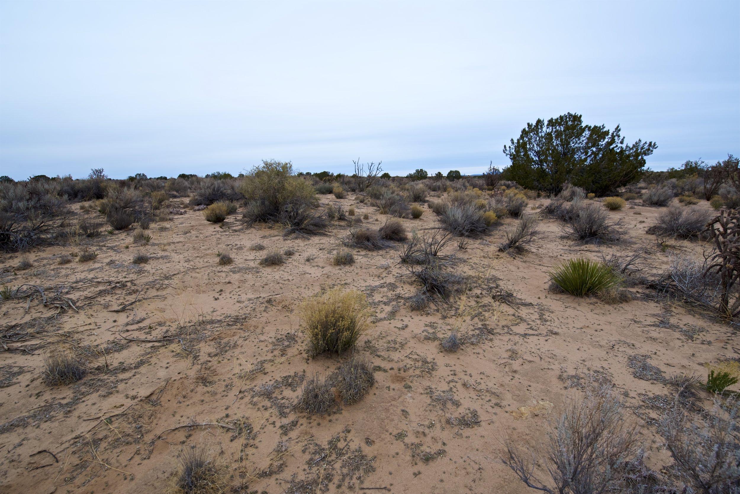 SNNM-2341-rio-rancho-85771.jpg