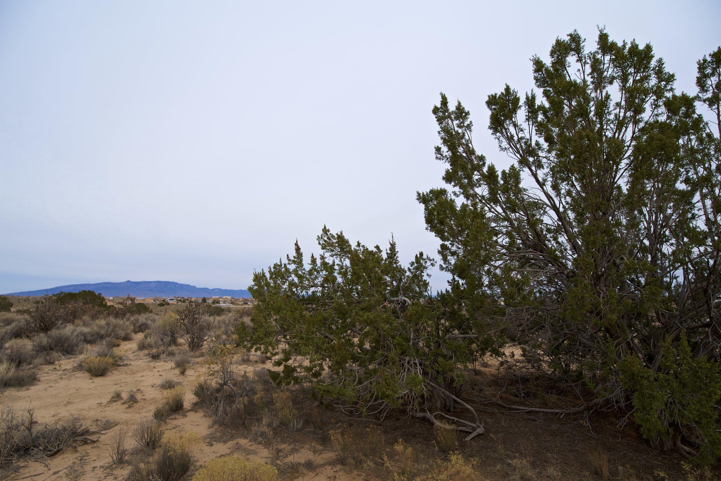 SNNM-2341-rio-rancho-85792.jpg
