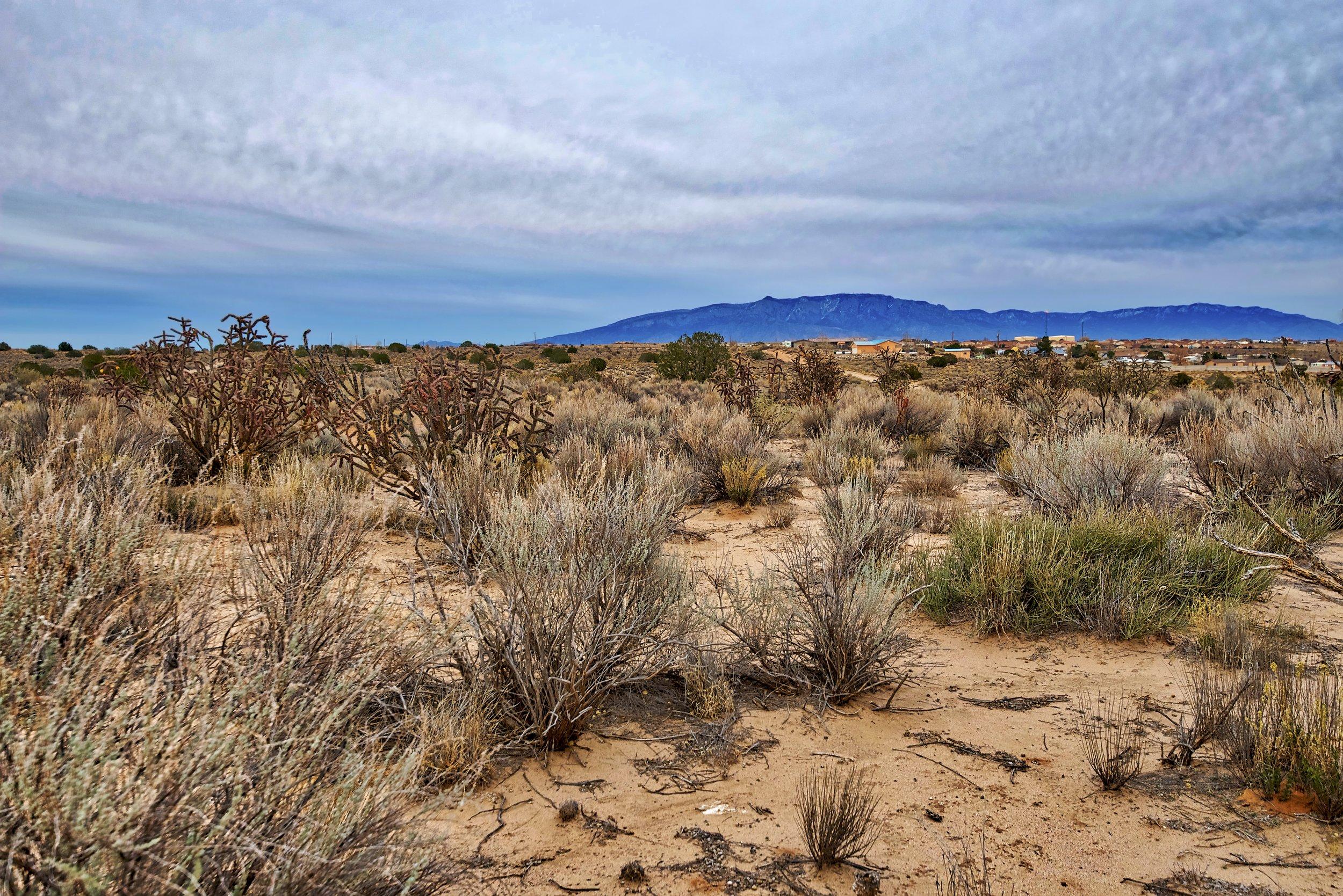 SNNM-2341-rio-rancho-85846.jpg