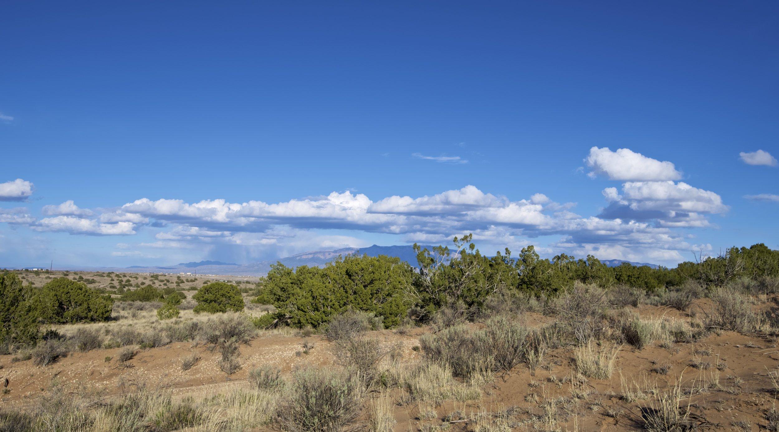 SNNM-2231-rio-rancho-125671.jpg