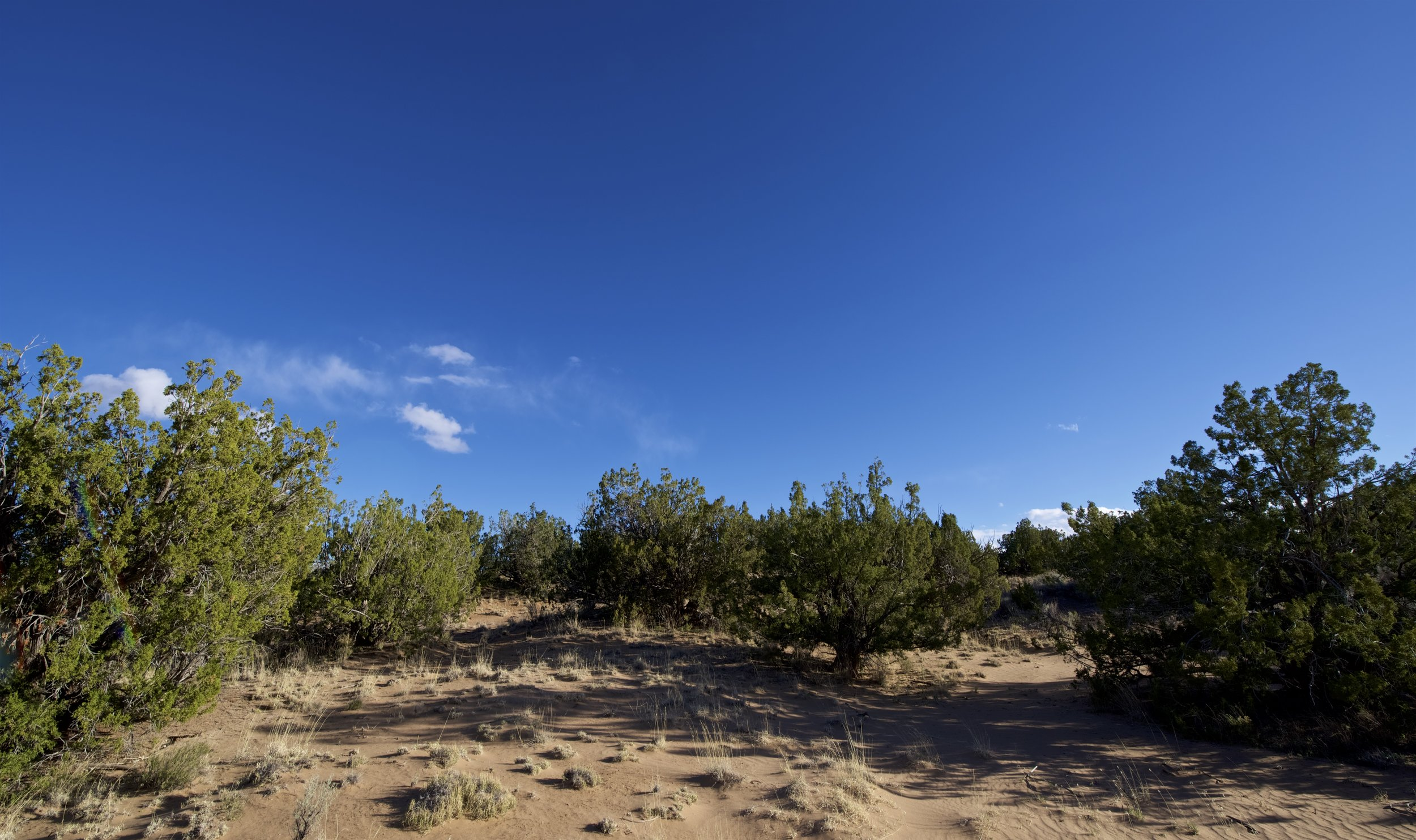 SNNM-2231-rio-rancho-125674.jpg