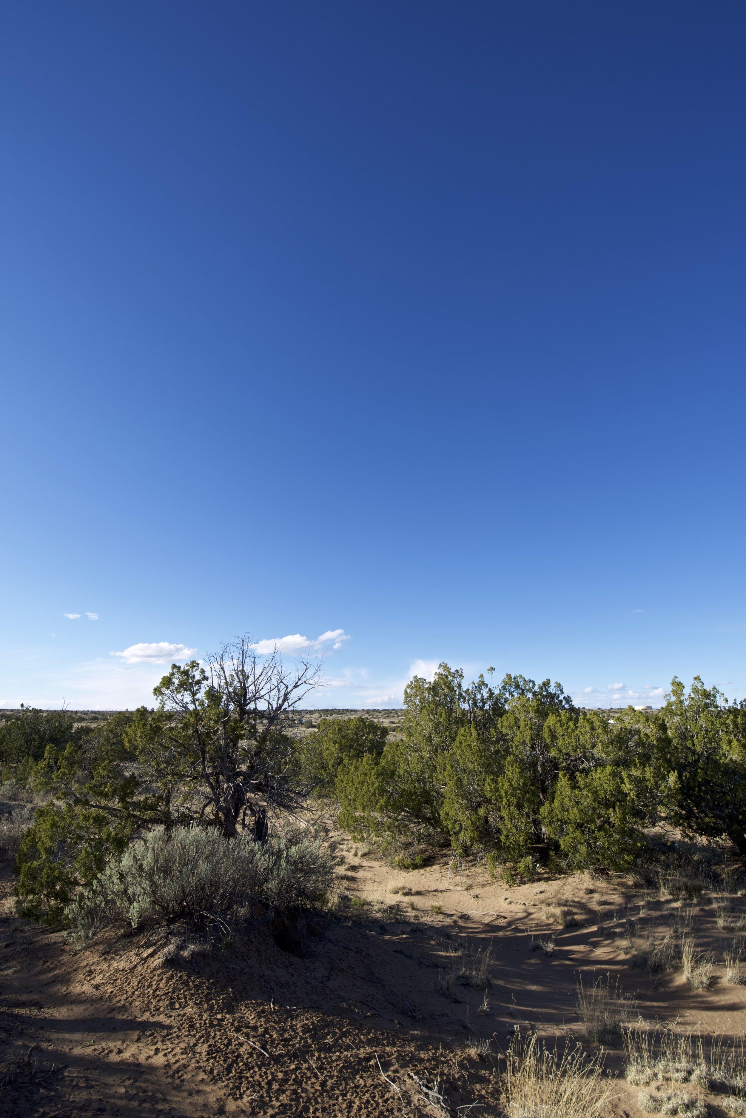 SNNM-2231-rio-rancho-125679.jpg