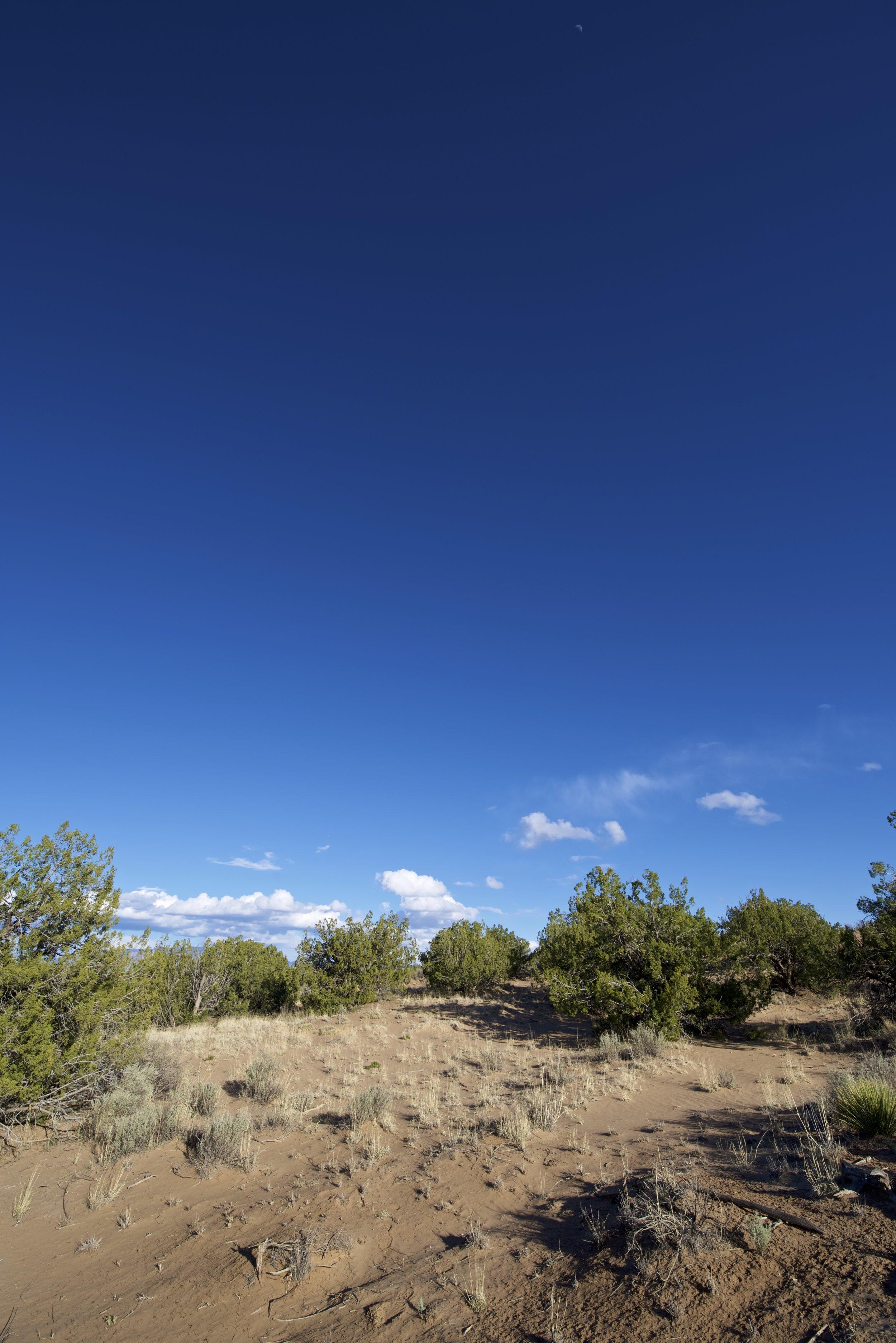 SNNM-2231-rio-rancho-125680.jpg