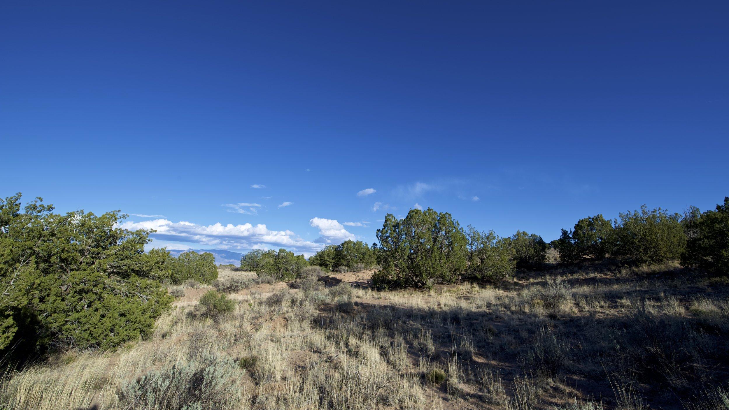SNNM-2231-rio-rancho-125684.jpg