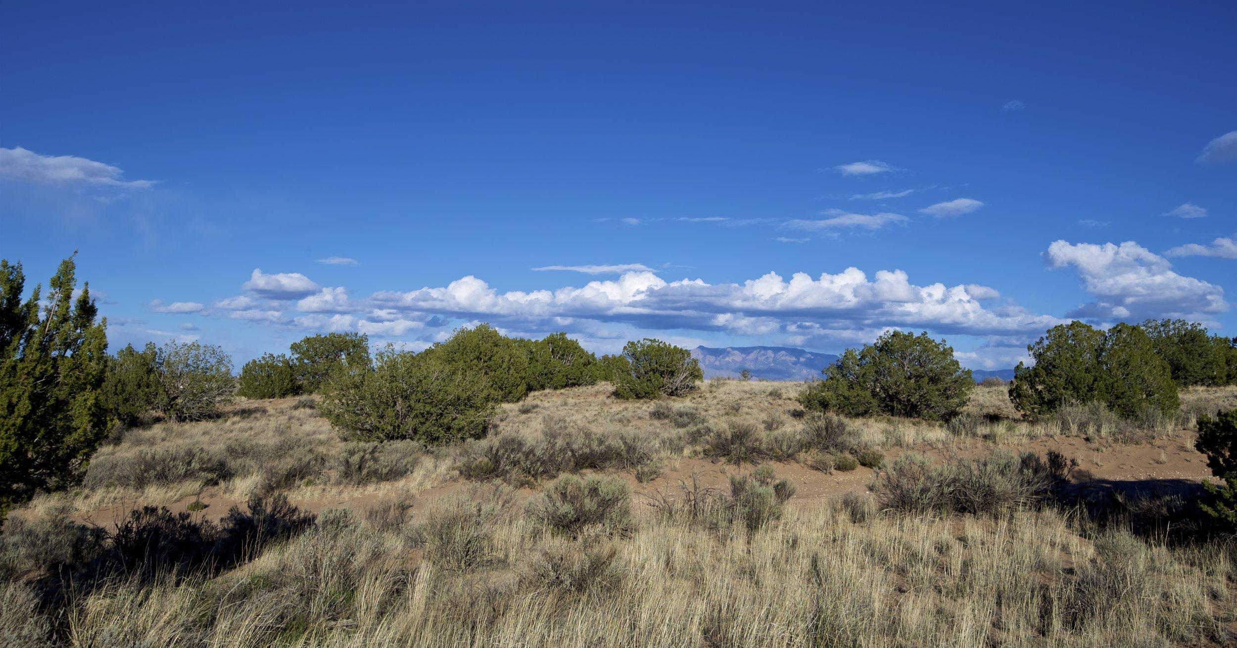 SNNM-2231-rio-rancho-125686.jpg