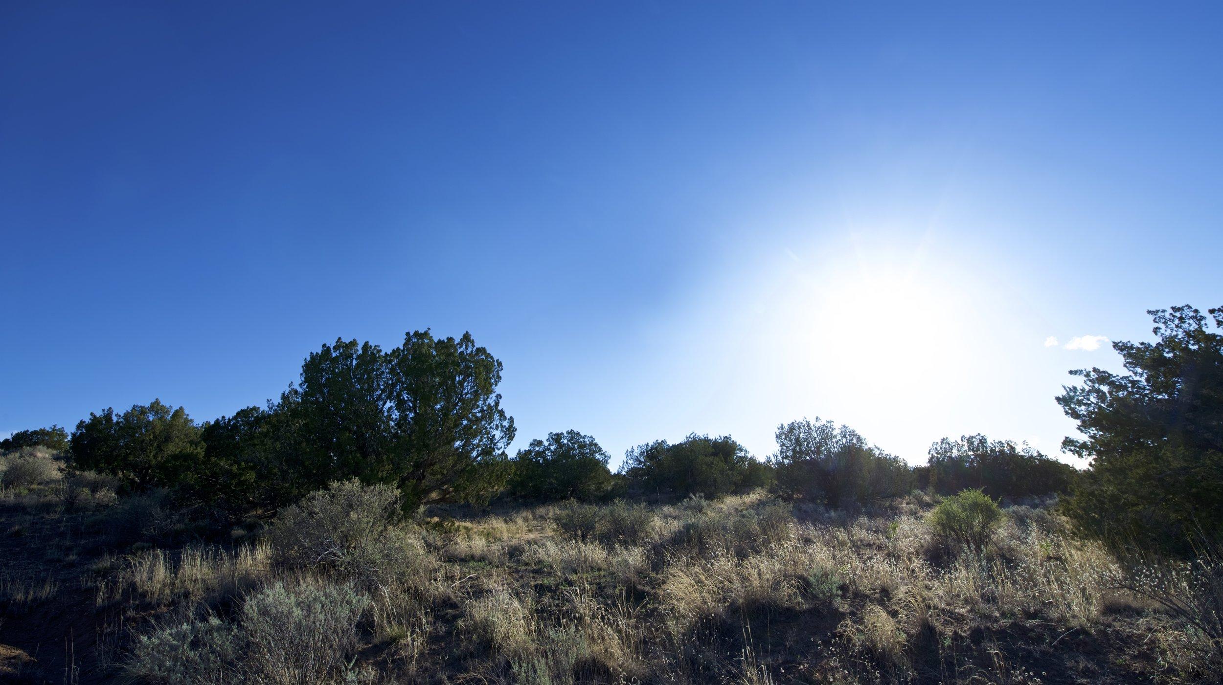 SNNM-2231-rio-rancho-125689.jpg