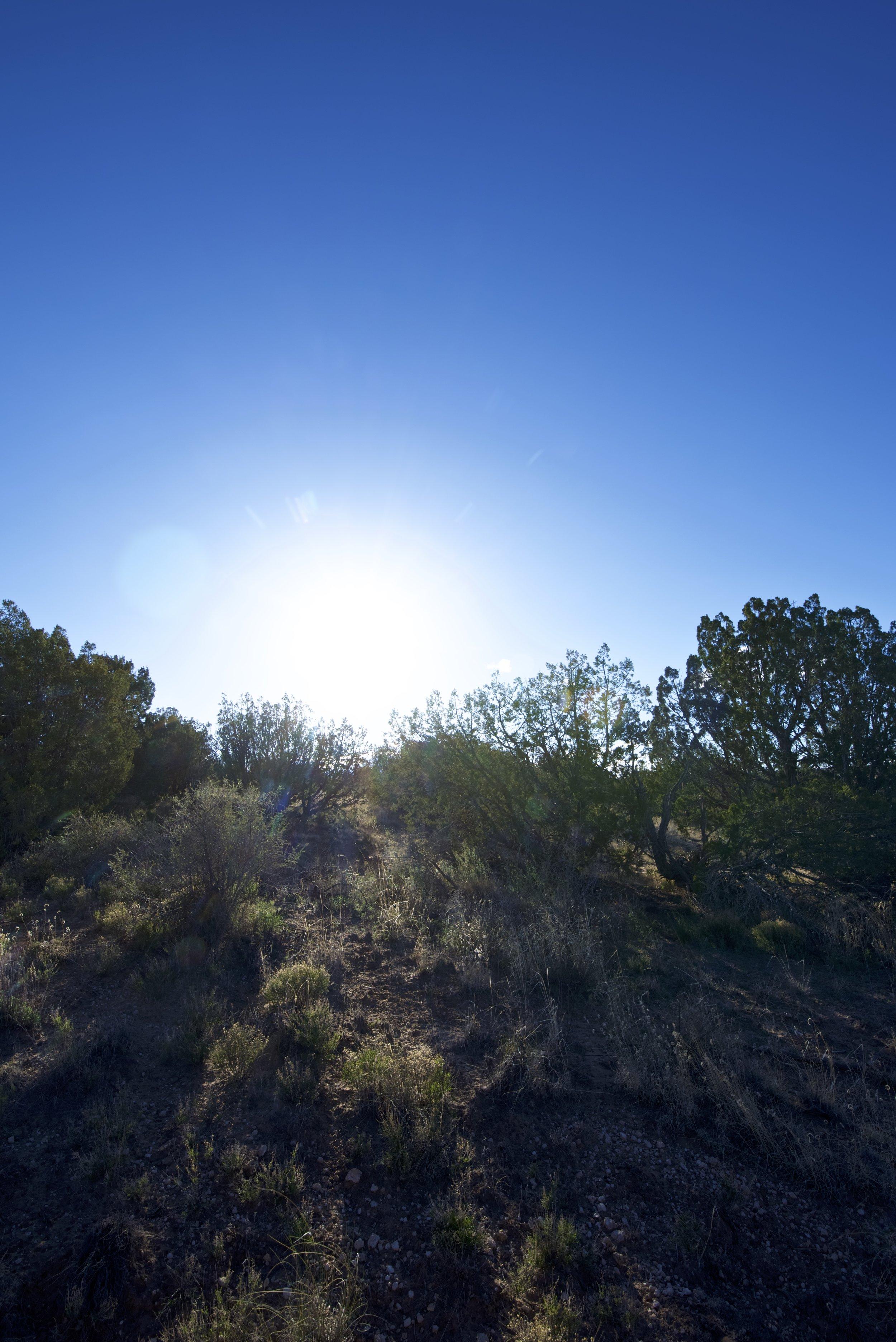 SNNM-2231-rio-rancho-125690.jpg