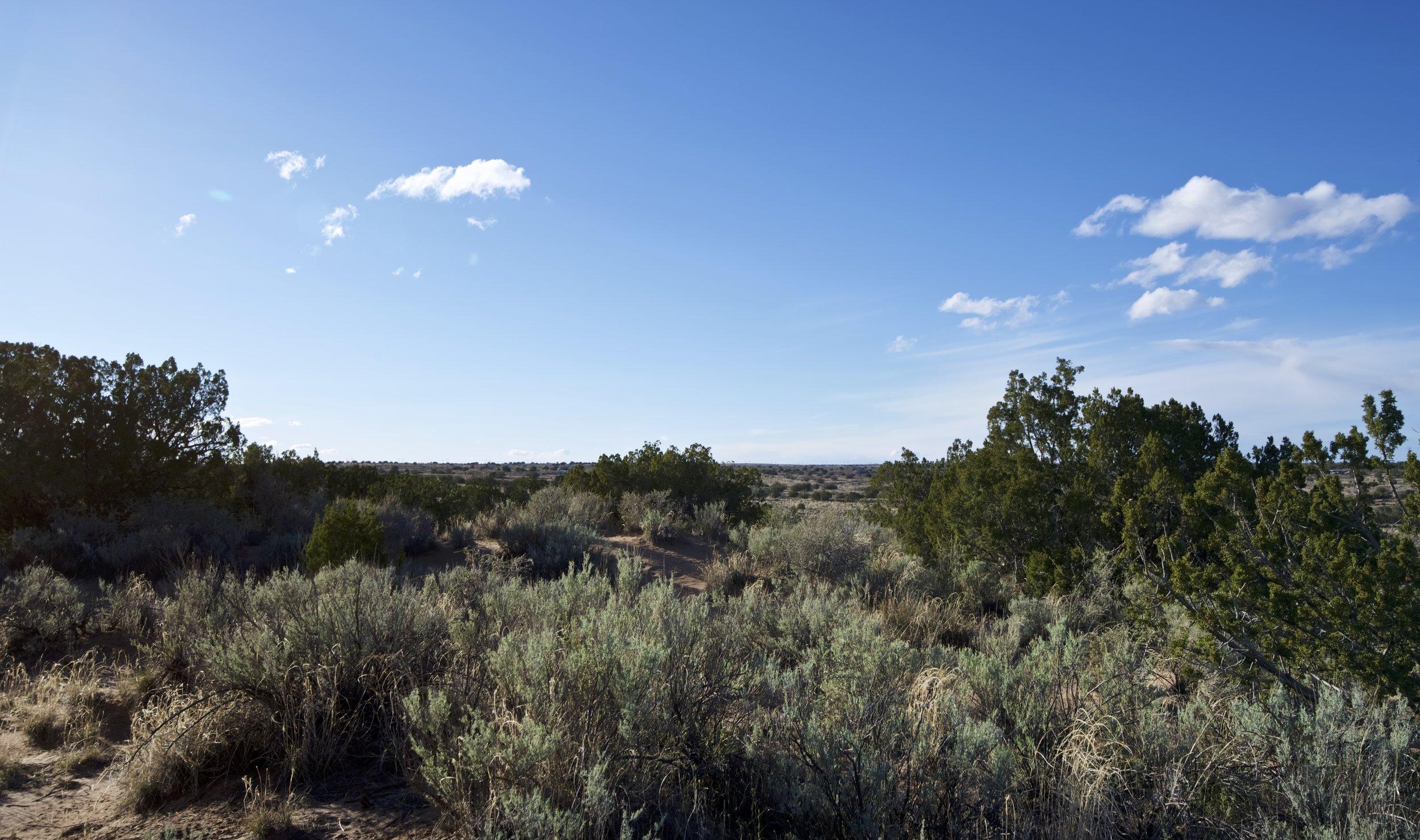 SNNM-2231-rio-rancho-125701.jpg