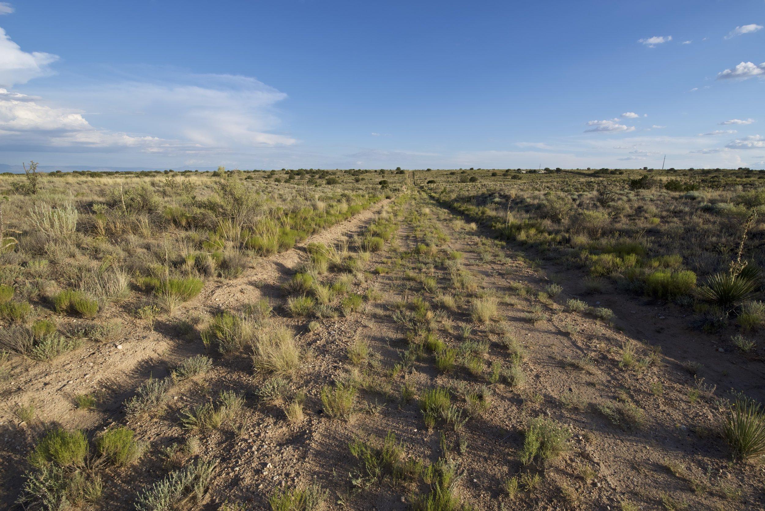 SNNM-BFG-rio-rancho-132751.jpg