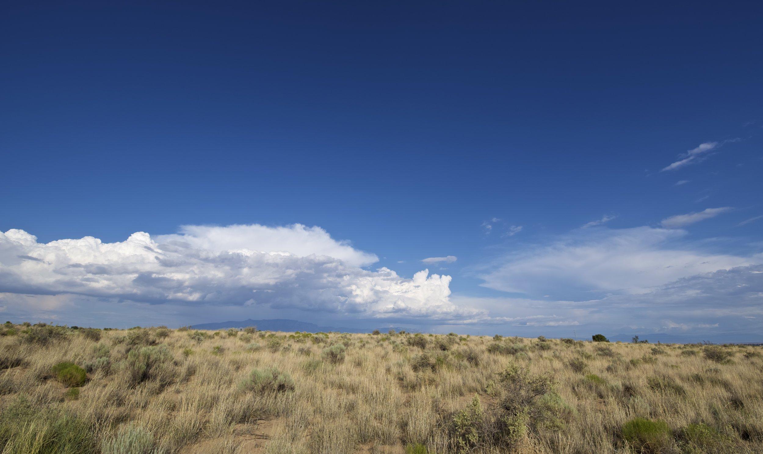 SNNM-BFG-rio-rancho-132724.jpg