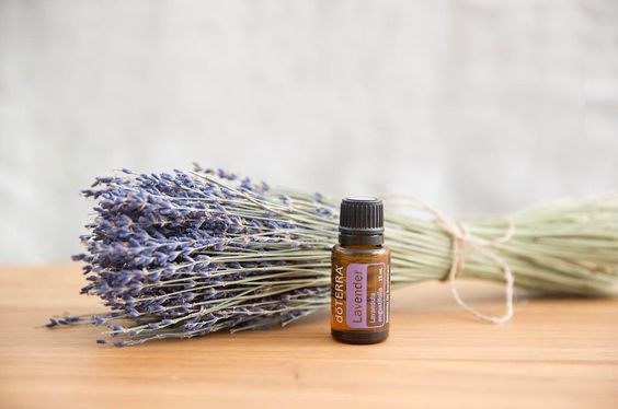 """""""Due to Lavender's versatile properties, it is considered the must-have oil to have on hand at all times. One of the uses of Lavender oil is to put 2-3 drops on dried lavender to boost its scent and provide calming feelings in your home."""""""