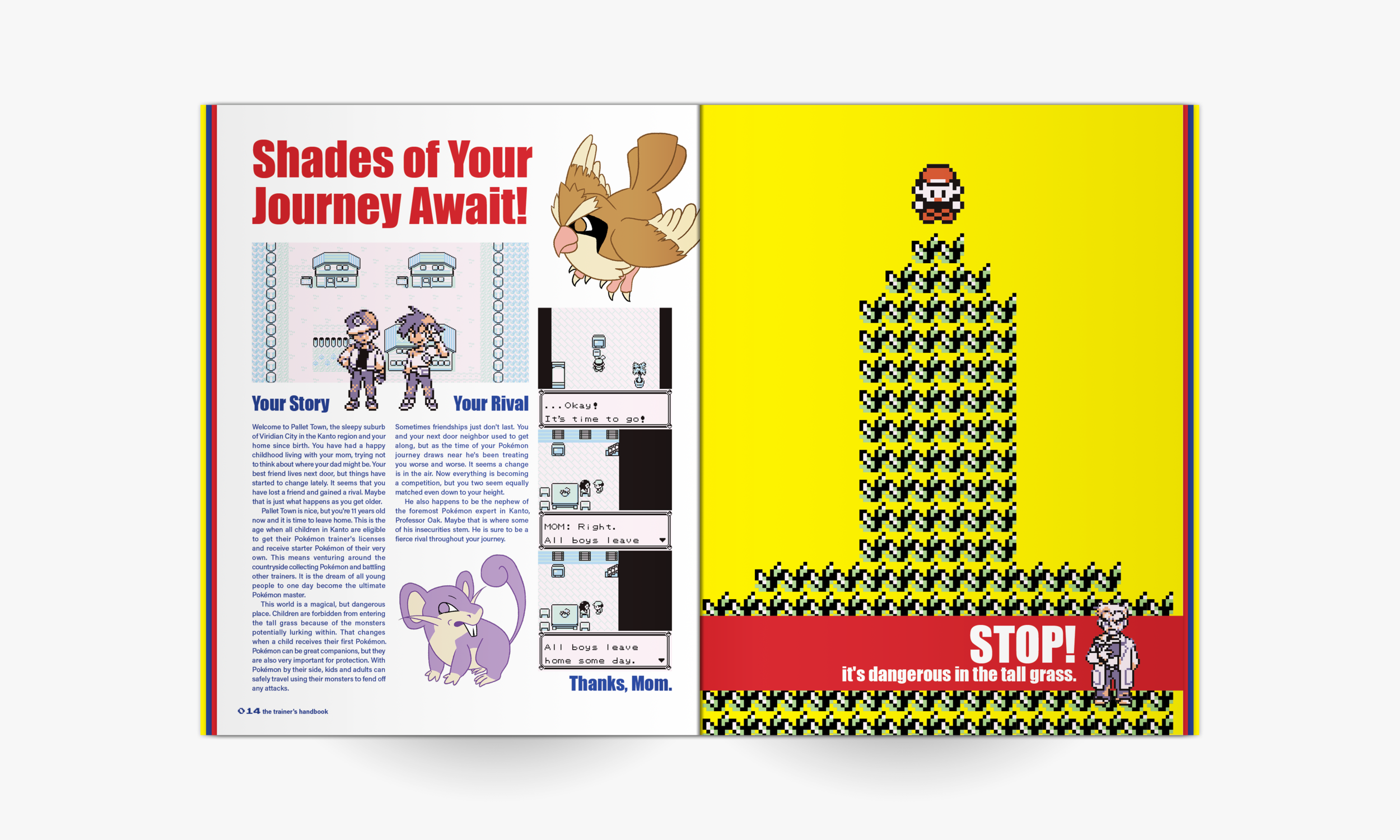 trainersguidepage_8.png