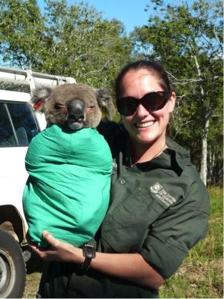 Skye working with the Koloa research team - tagging animals in SE Queensland