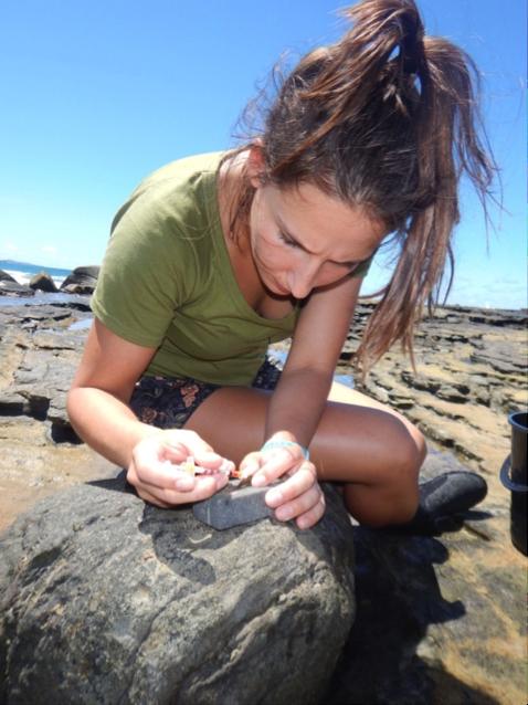 Dr Carmen Da Silva    Acclimation capacity of intertidal fish: anticipating tolerance to climate change