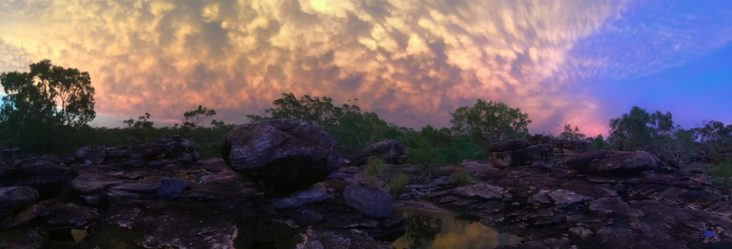 Miranda's latest blog post on the quoll team's first trip for 2019 is live. Check it out:   Bad weather, blue-tongues and baby quolls  - it's the start of a new year on Groote .