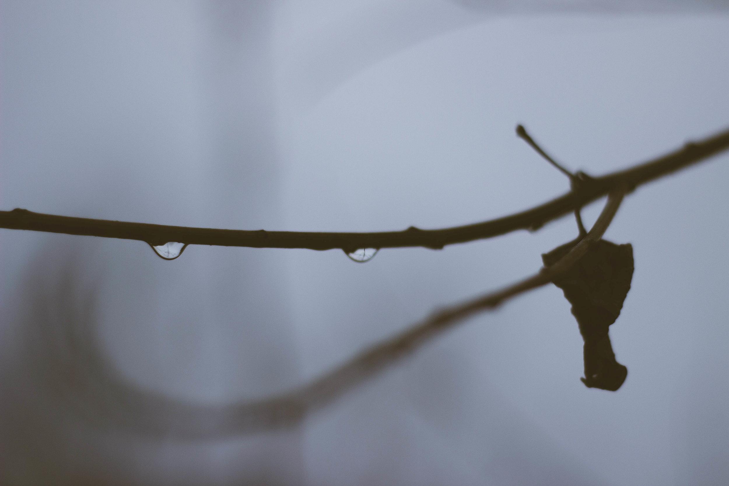 Ant Farm Journal  Shelter the Storm  Photos by Trevor Bennett