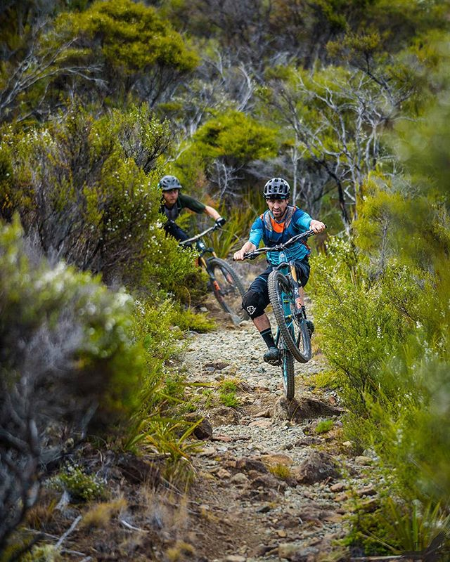 Sick Dawn raid on dew lakes with @whiskymike and @johnbutlernz today. A few bangers, some hairy moments, a bent derailleur and a stick removal from arm with pliers later back in town in time for work. Or coffee for me anyway. Rad times with a rad crew. #whfwyl #wheelworks #nelsonshines #nelsonmtbc #nelsonmtbcomunityisthebest #adventure #sicktrail #bikes #nikonnz #instagood #picoftheday #ridingbikesmakesmehappy