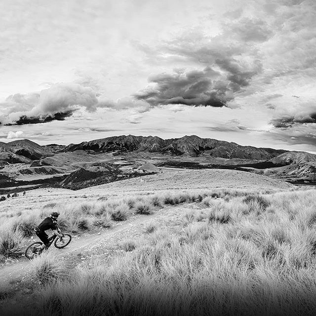 @transnzenduro day one. @jonas_2f4u leading, one second ahead of @endurojc. Yeah boi!  #whfwyl #transnz #bwwednesday #bw #craigieburn #craigieburntrails #monochrome #mountainbike #enduro #optoutside #choosemountains #cheesemandh
