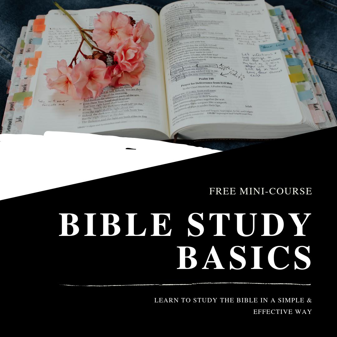BIBLE STUDY BASICS.png