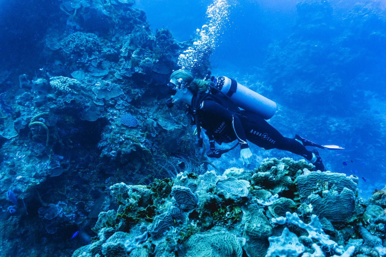 Bajo el mar-00060.jpg