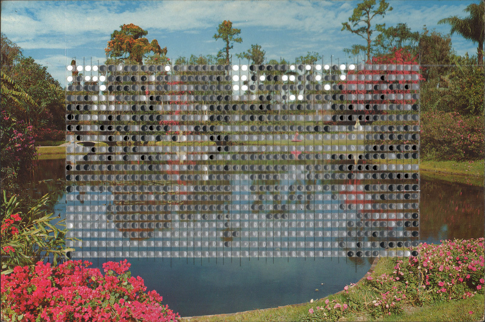 Borrowed Landscapes Study No. 152/FL, Winter Haven, Cypress Gardens Reflection Pool