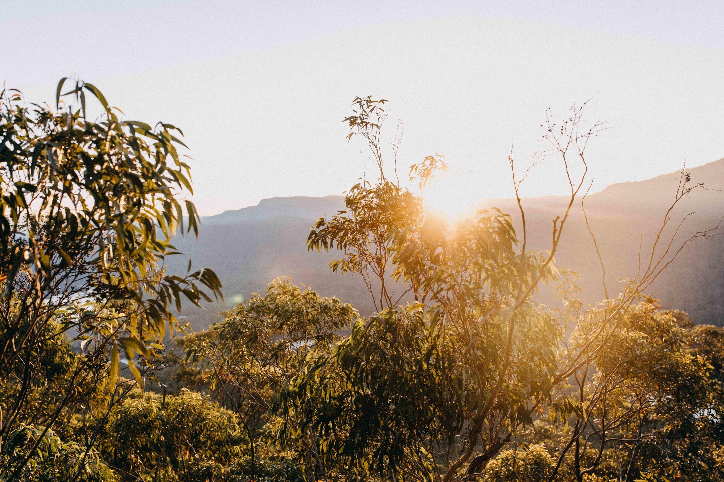 kangaroo-valley-bush-retreat-wedding-lydia-nate-www.emilyobrienphotography.net-141.jpg
