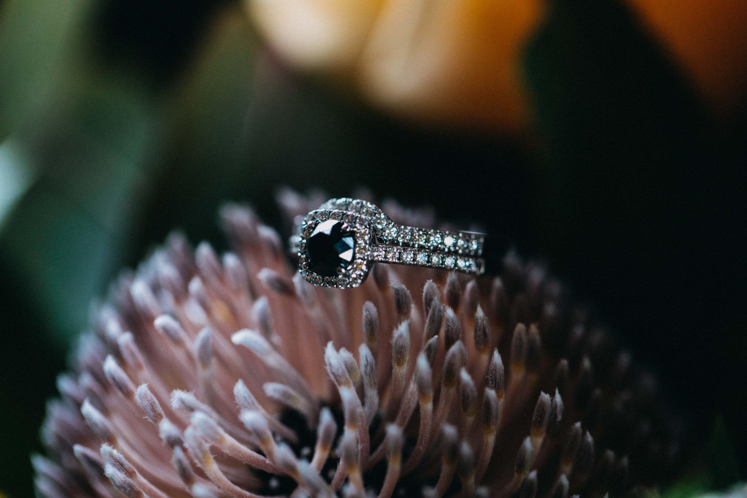 burnham-grove-camden-wedding-emilyobrienphotography-macarthur-33.jpg