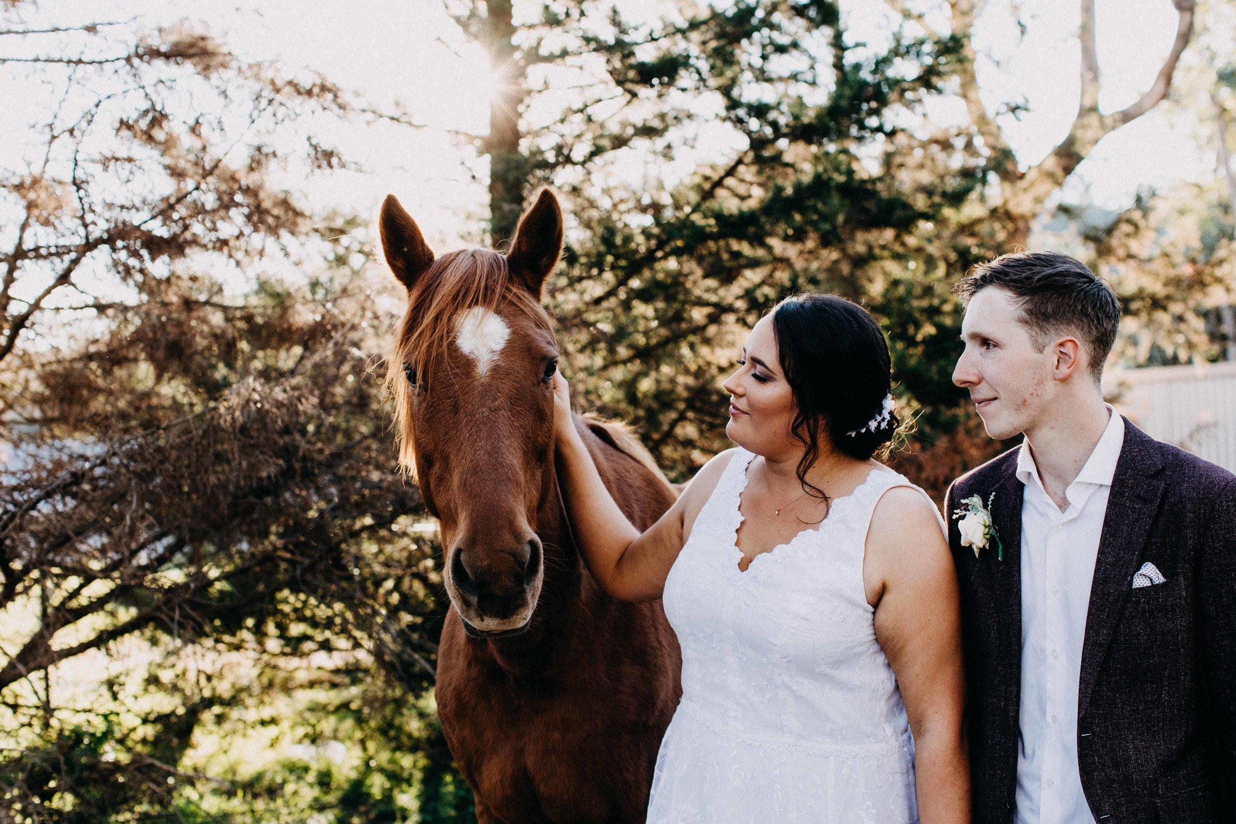 mount-hunter-wedding-kathleen-brenan-www.emilyobrienphotography.net -51.jpg