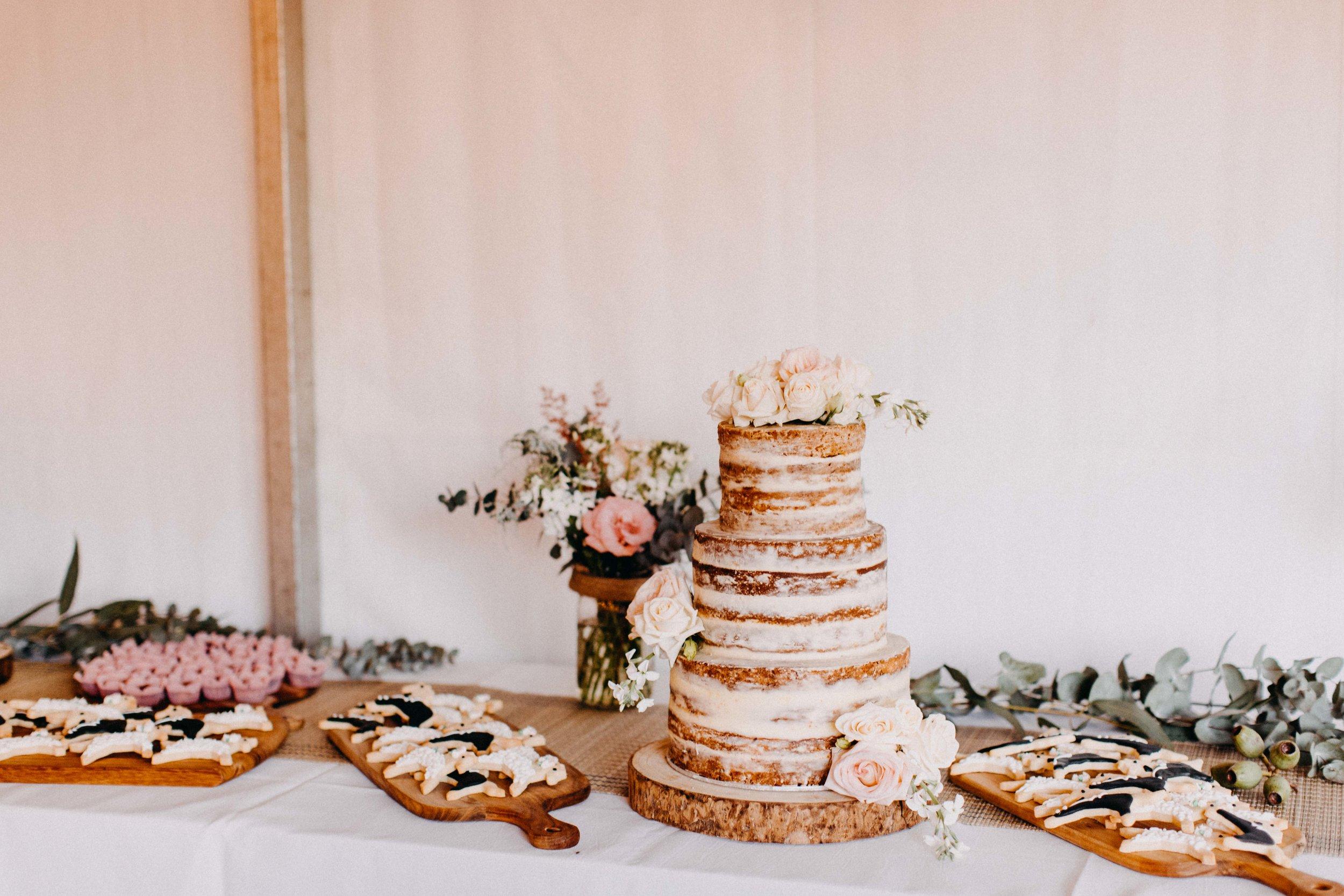 mount-hunter-wedding-kathleen-brenan-www.emilyobrienphotography.net -64.jpg
