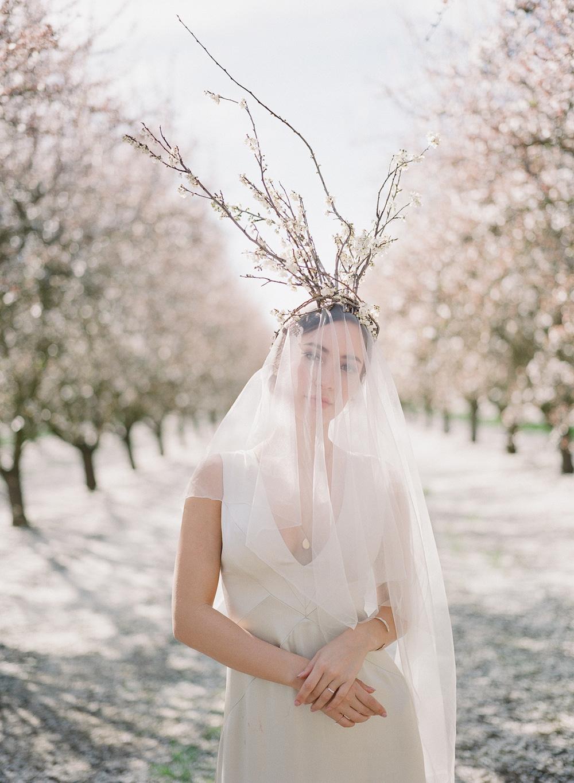 JEREMY CHOU PHOTOGRAPHY - ALMOND BLOSSOM-0014.jpg