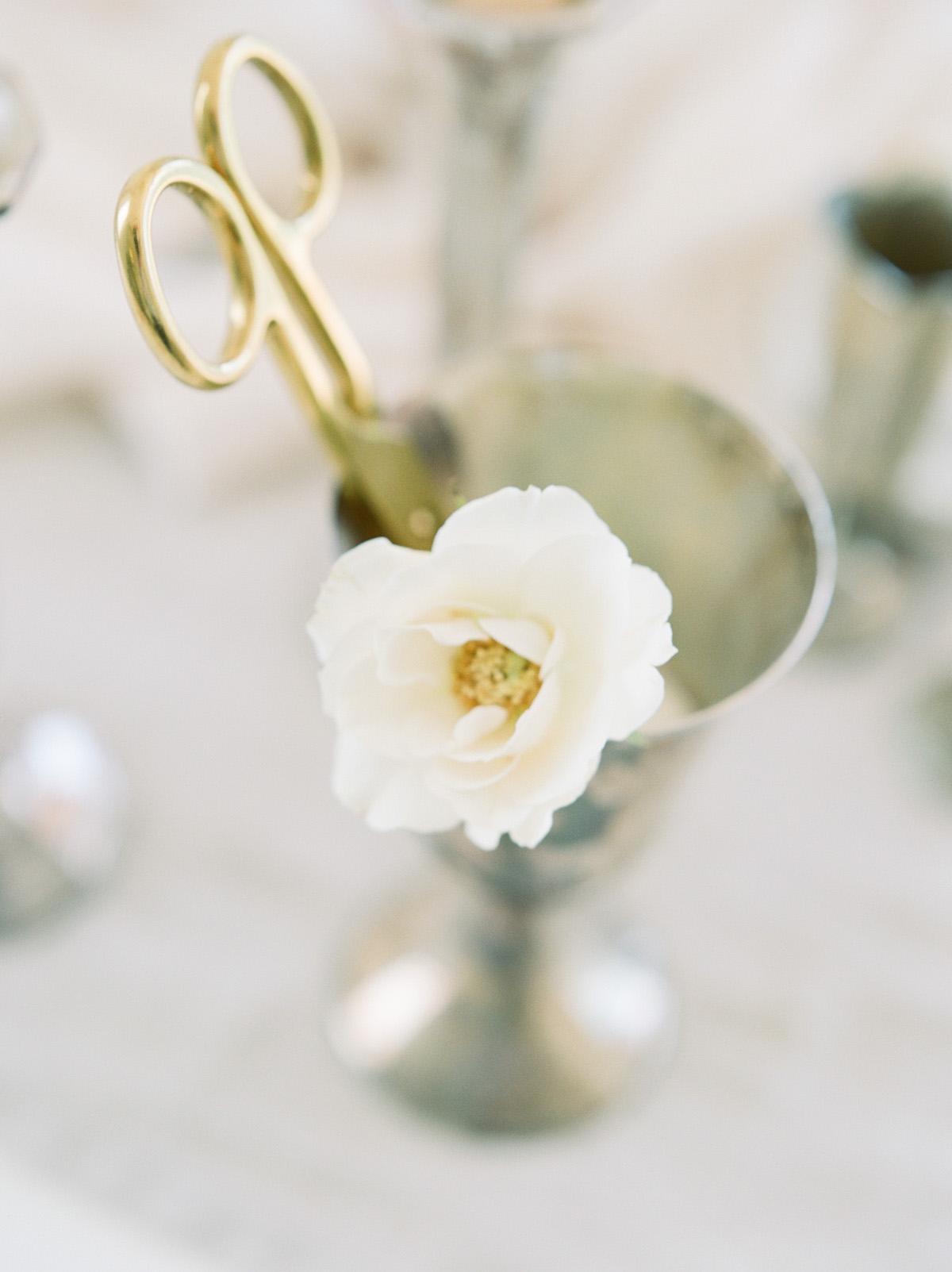 olea-and-fig-blooming-wed-brand-shoot-20.jpg