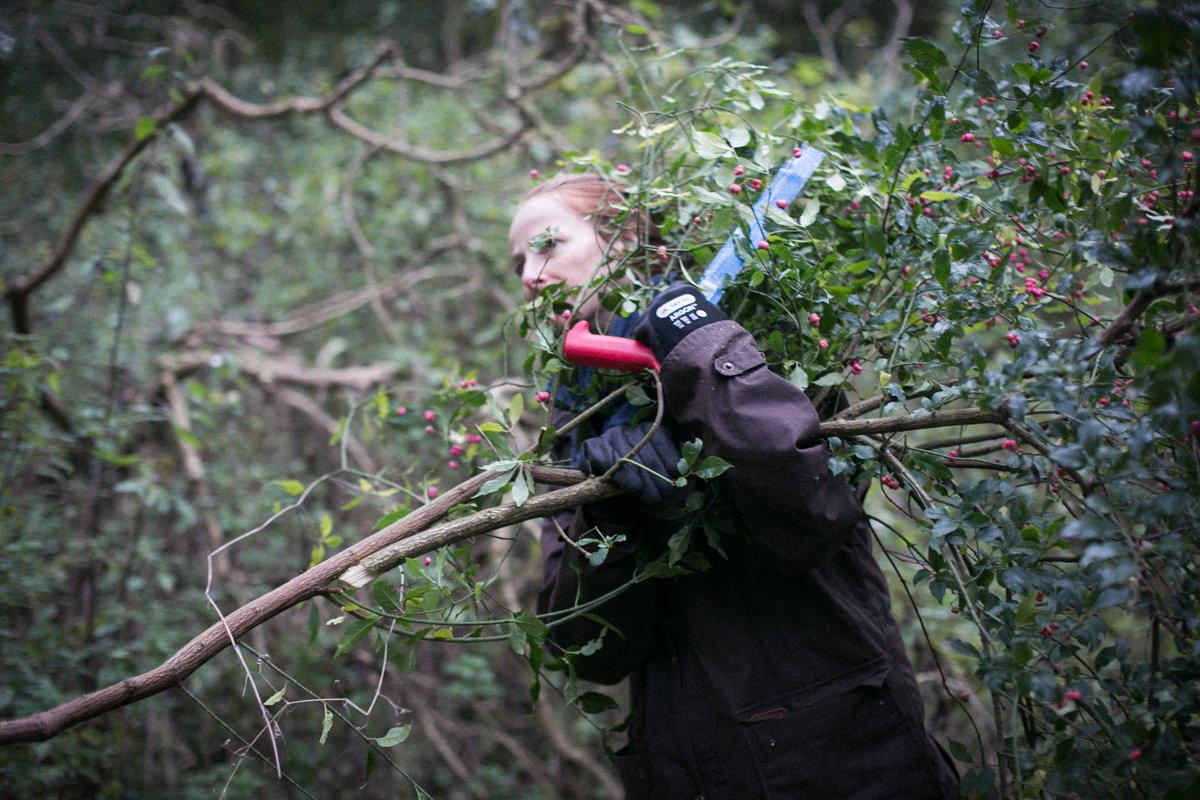 me foraging - I take this quite seriously   Image by Nick Ilott