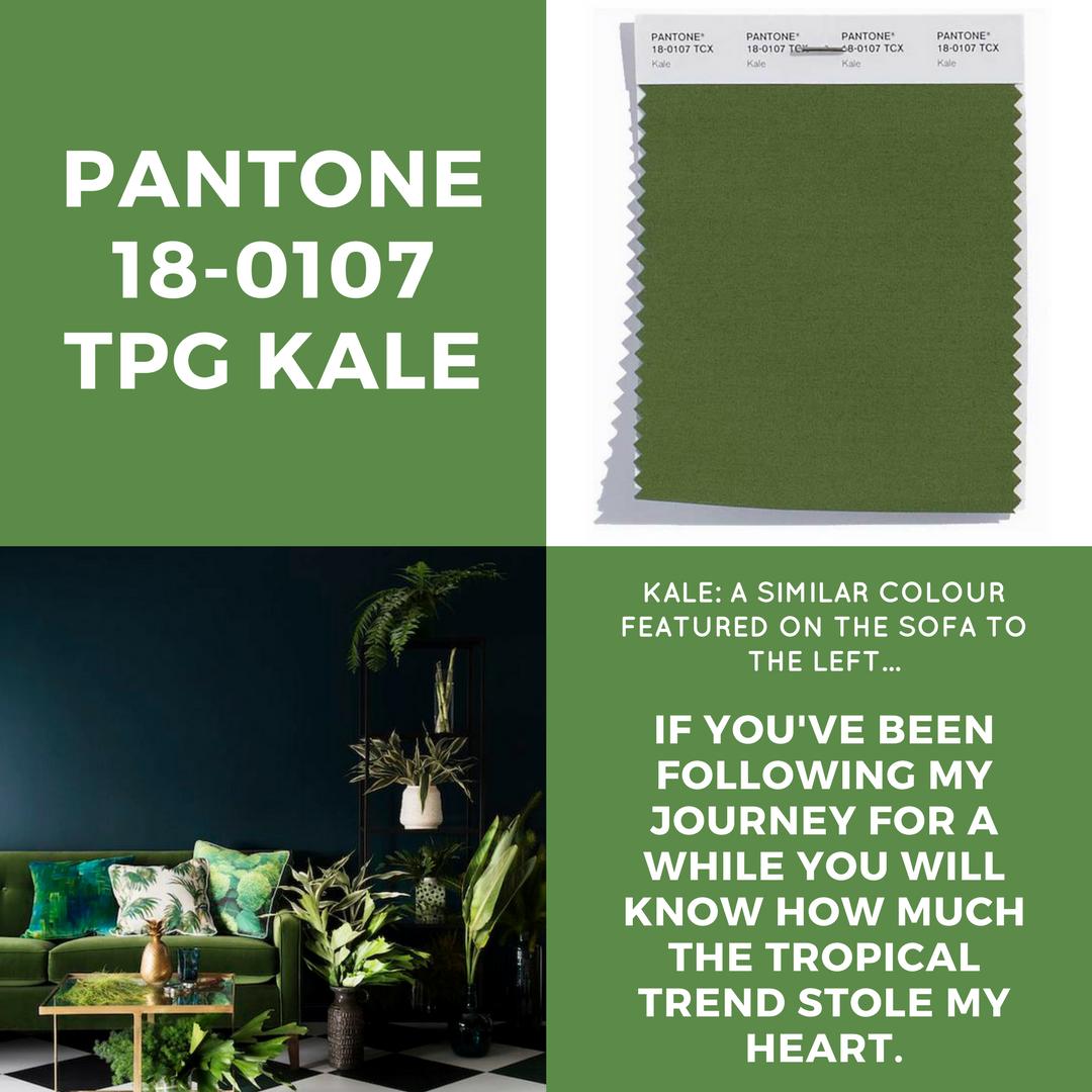 PANTONE KALE