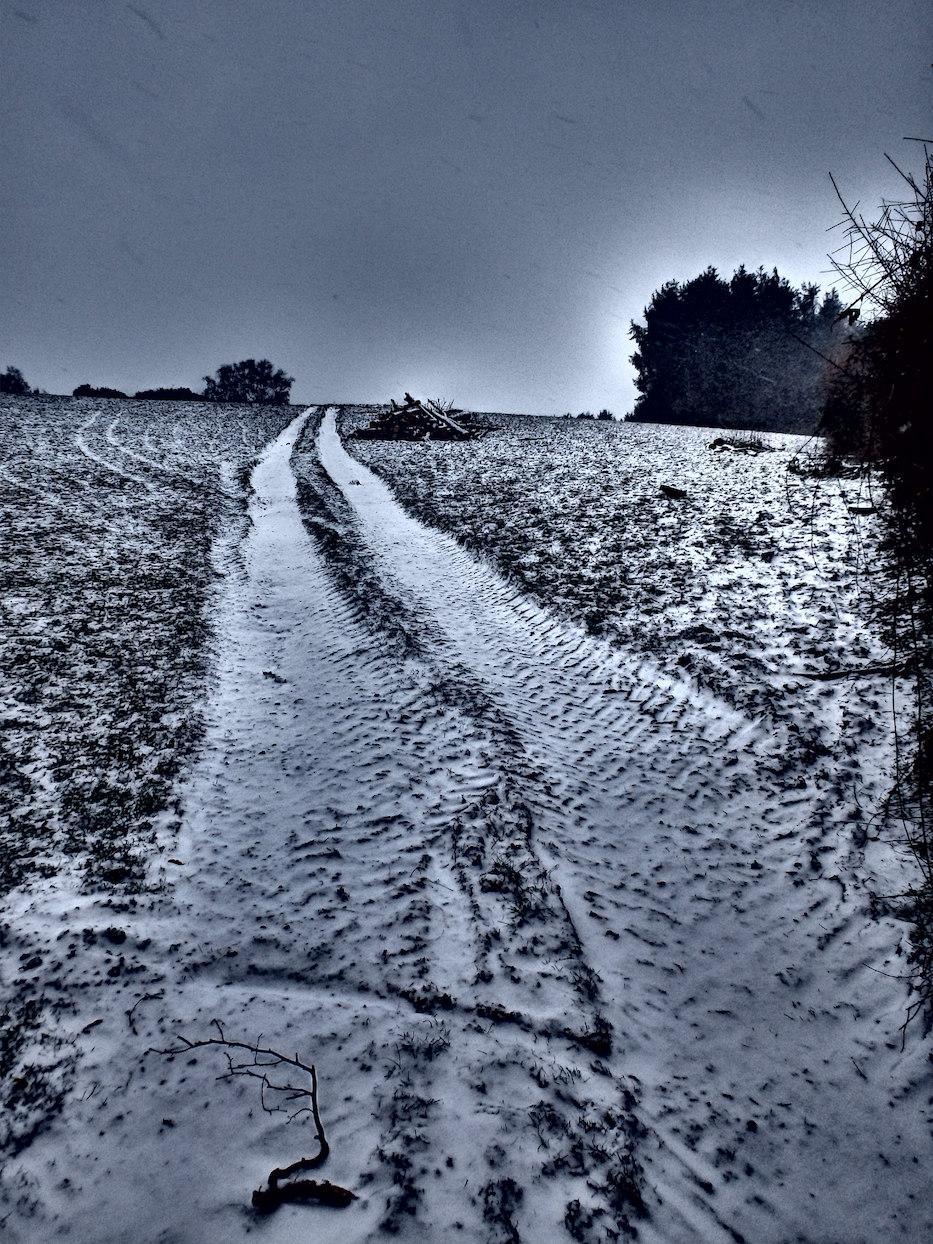 Snowy Dartmoor!
