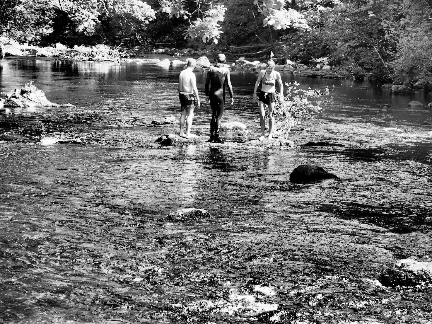 The swimmers contemplate the river