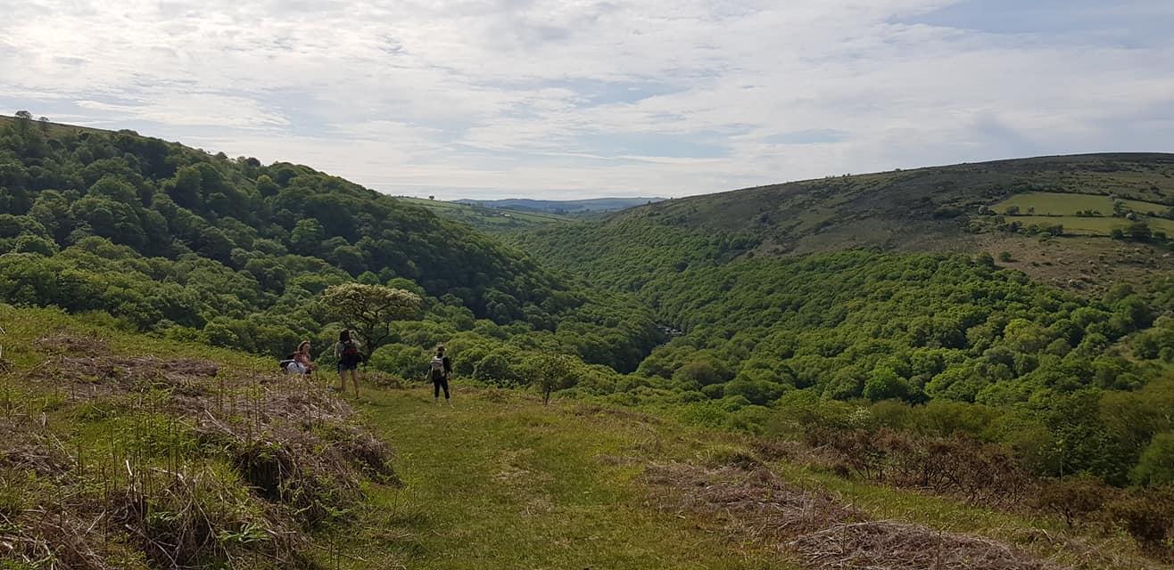 Overlooking the Dart valley