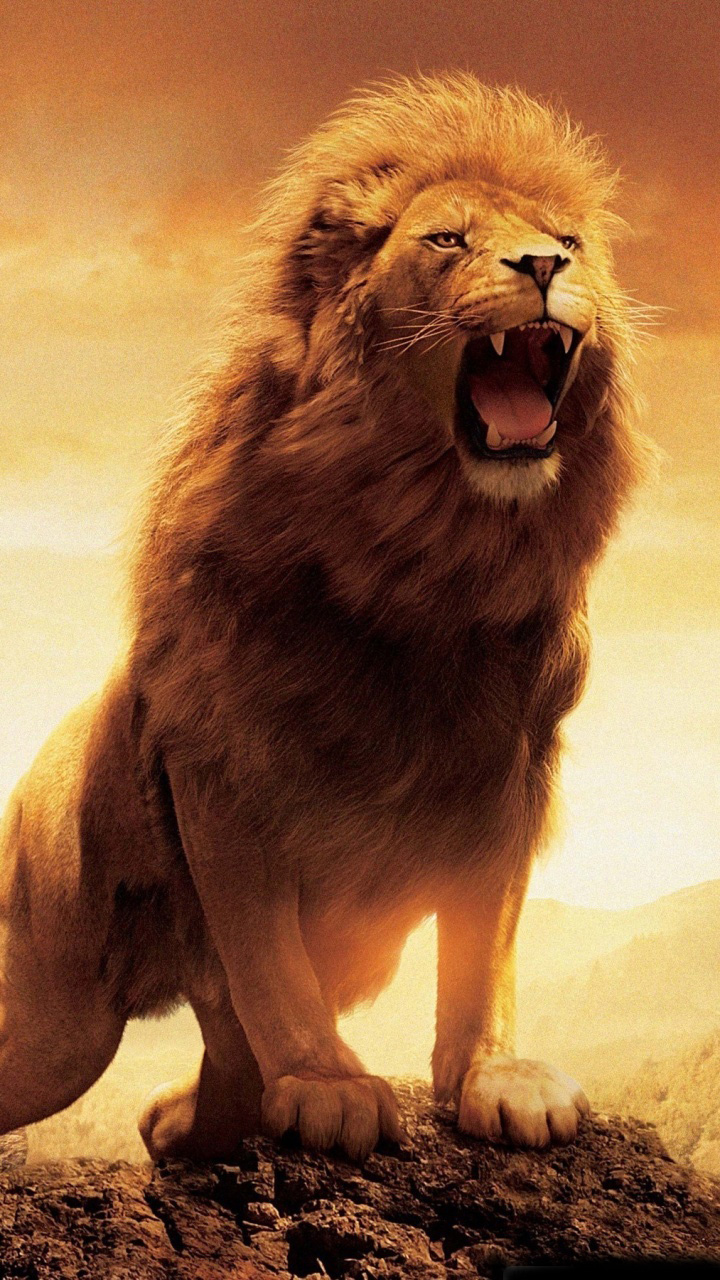 The cliché of a roaring lion… (picture credit not supplied)