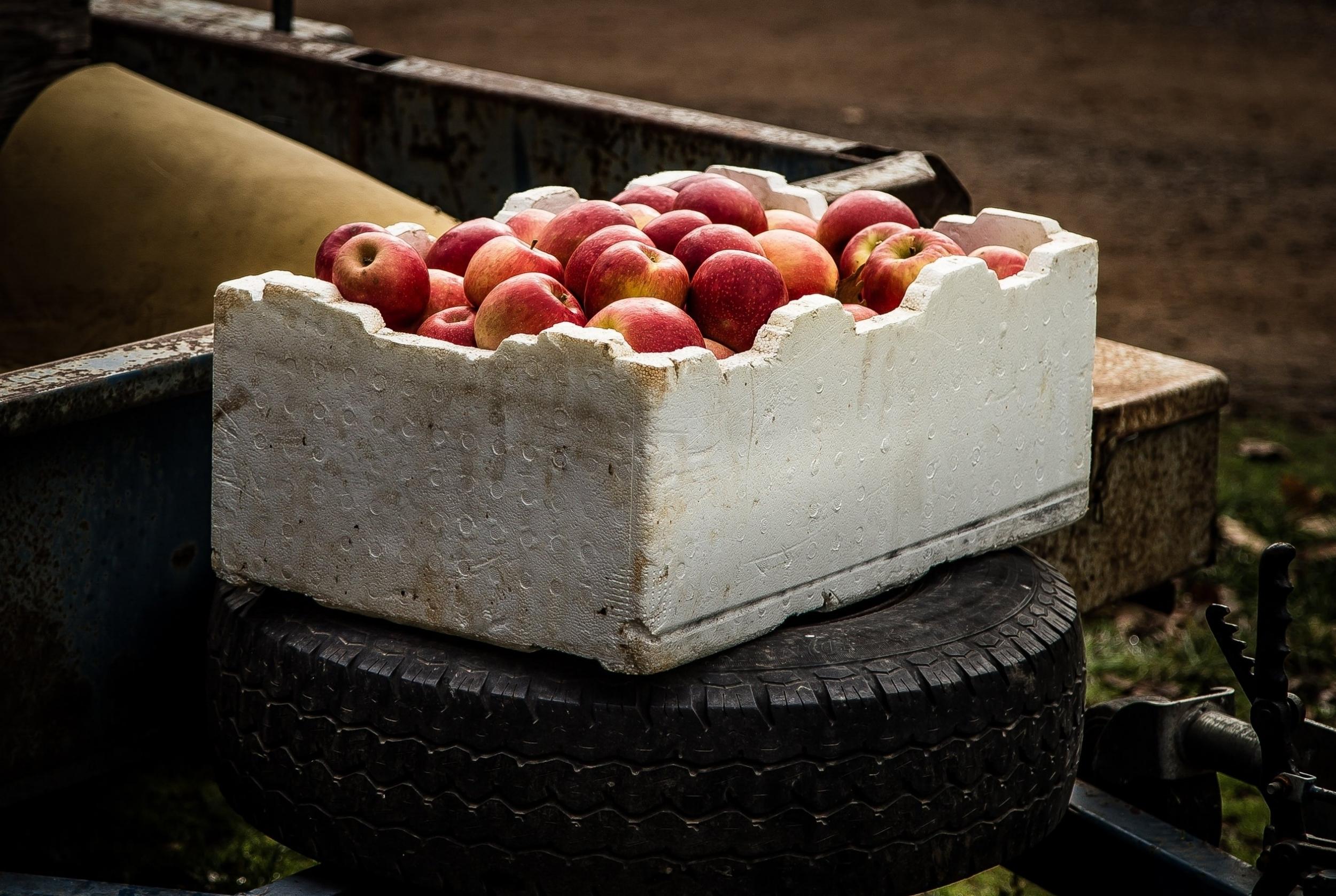 Leverandøravtaler: eske med epler.jpg