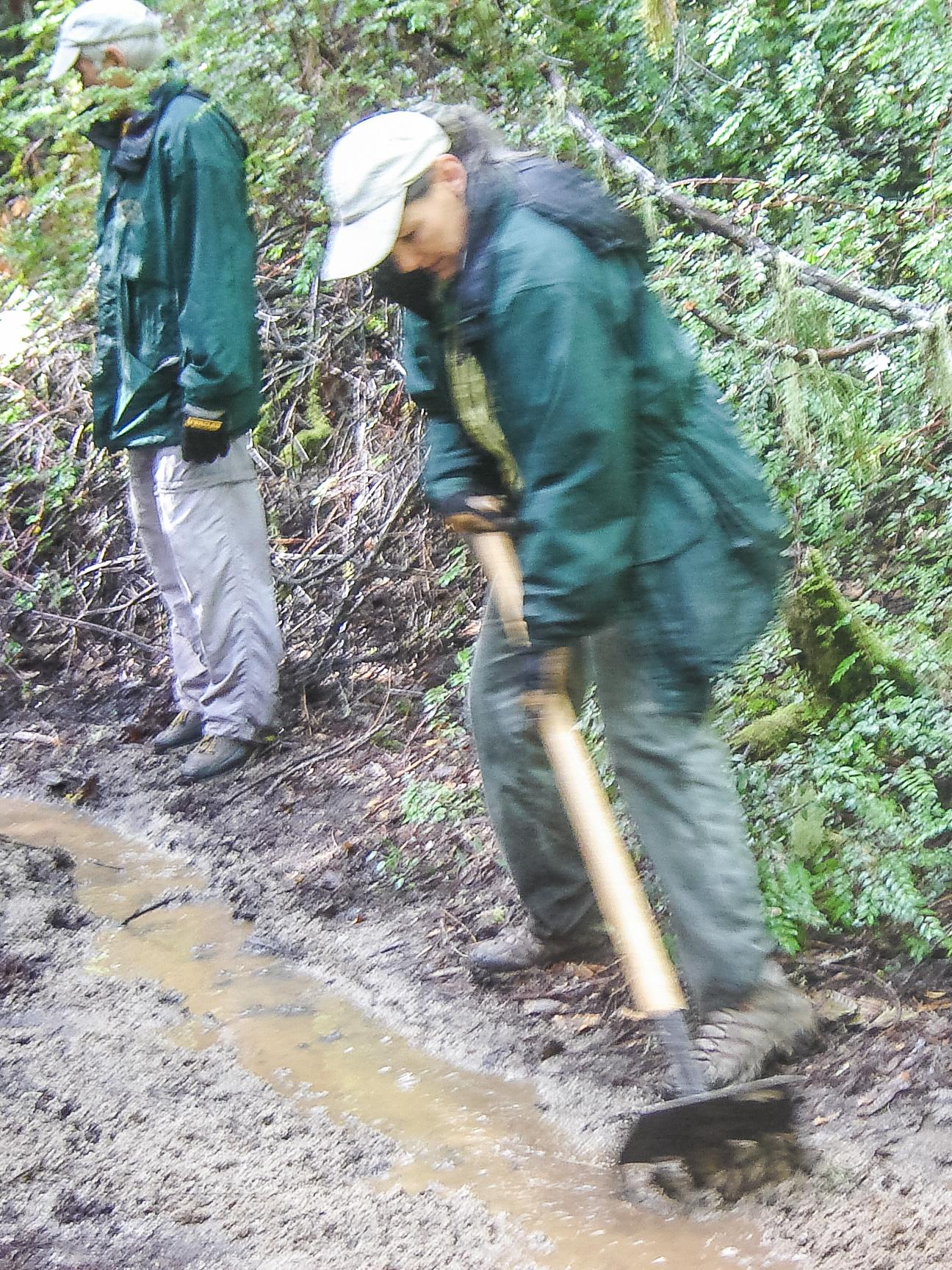 Drainage work on the Redwood Loop