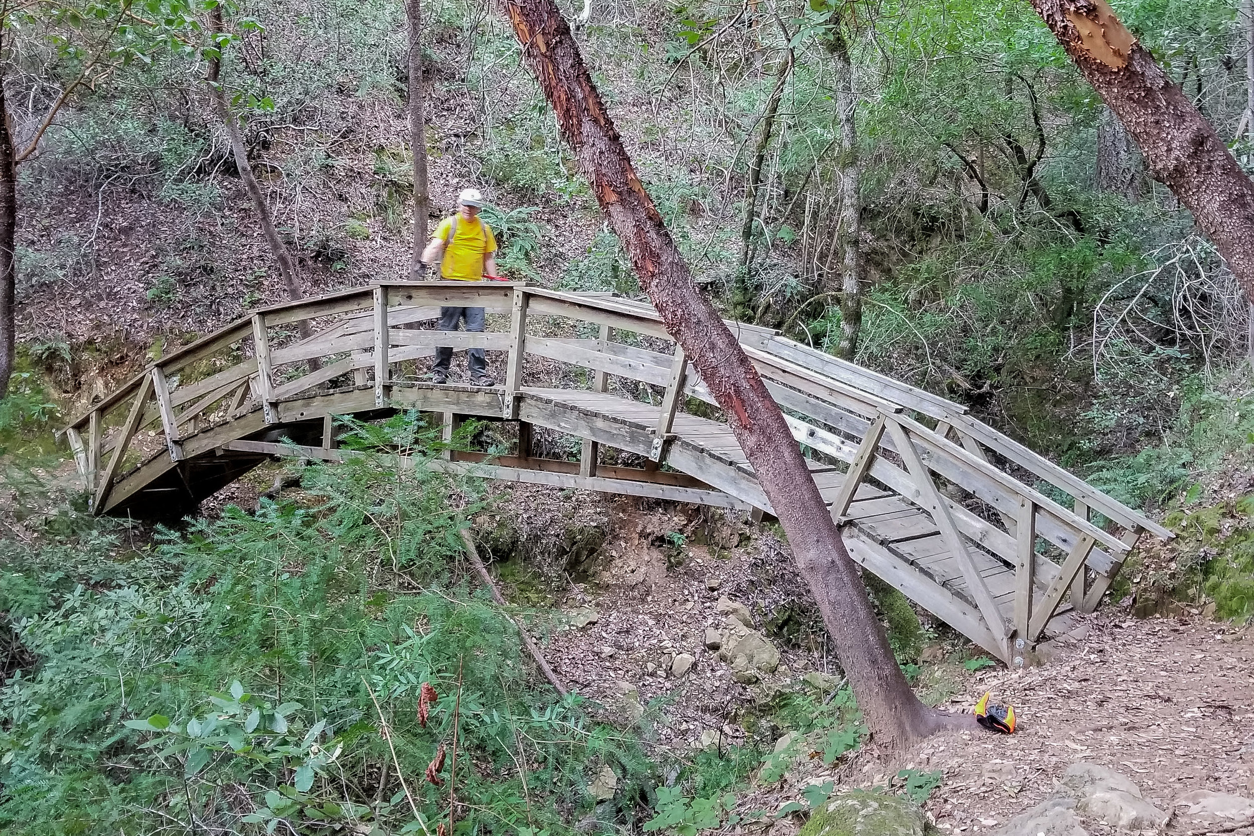 Eagle Rock Bridge built by the Trail Crew almost 30 years ago in 1989.