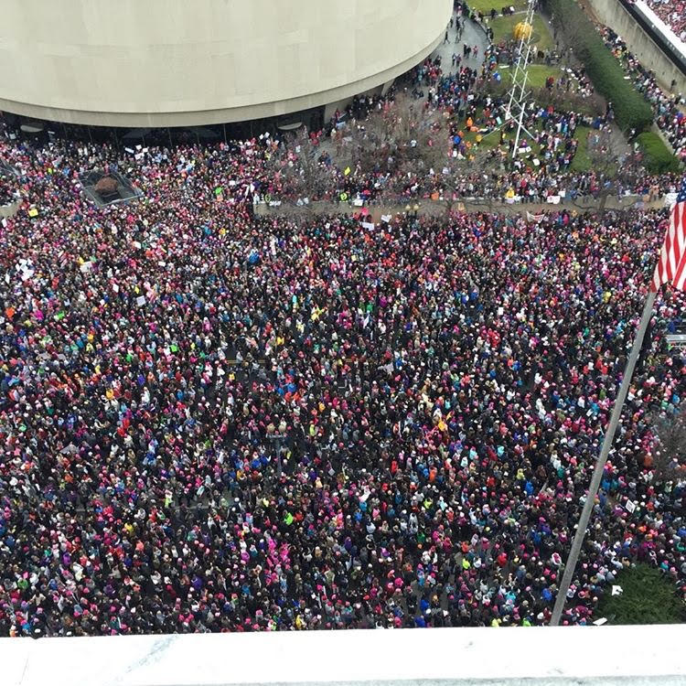 Aerial view: Women's March on Washington, Jan. 21, 2017. Photo Credit:Kerry Fleming