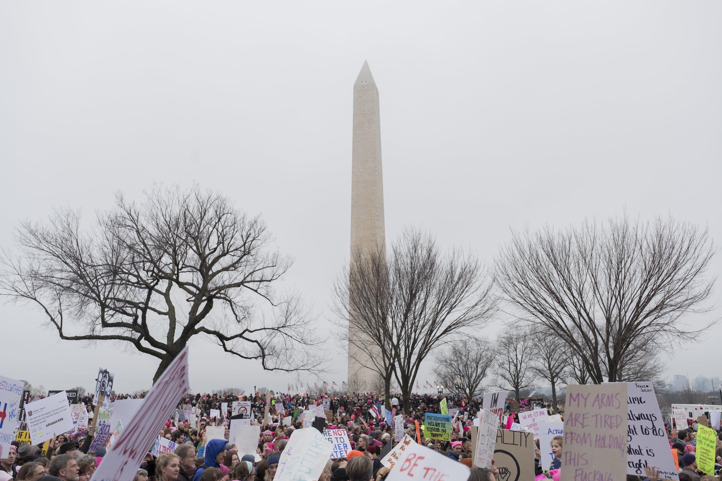 Women's March on Washington, Jan. 21, 2017.Photo Credit: Katie Orlinsky